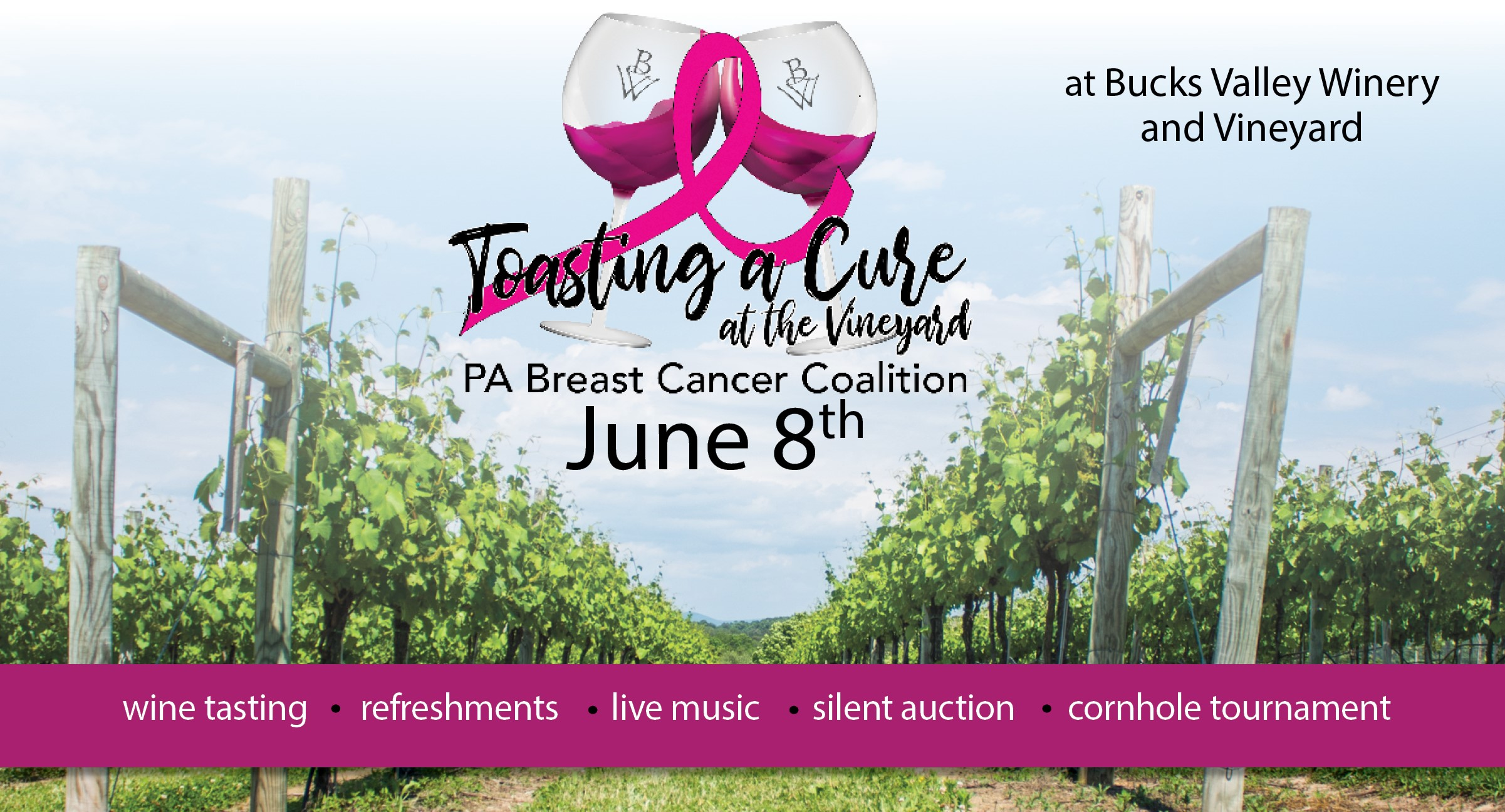 Celebrate the 5th Annual Toasting a Cure at the Vineyard